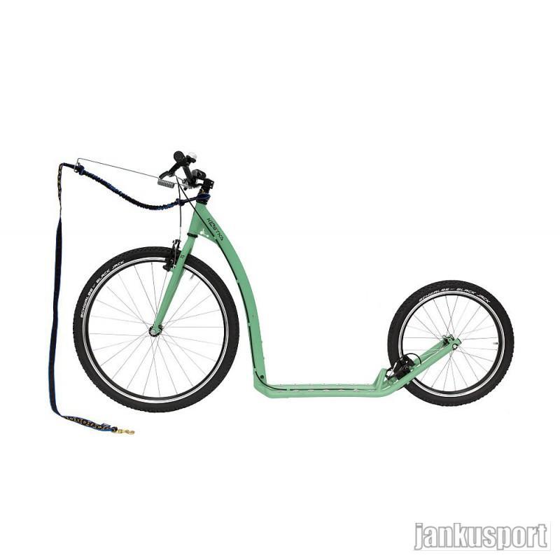 Koloběžka Kostka Tour max dog - pastelově zelená